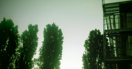 pappelnmorgens